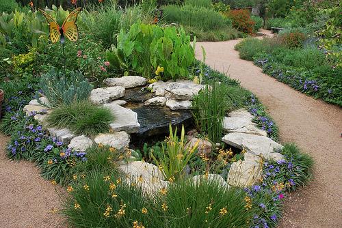 Water clark richardson architecture sustainability for Xeriscape garden design